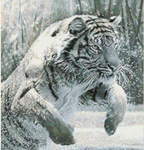 Cold Bravery (crop)