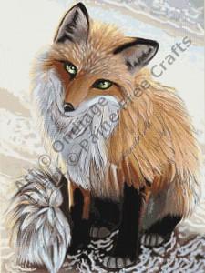 Beach Fox