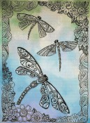 Dragonflies (colour)