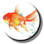 Goldfish (Needleminder)