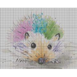 Picklepants the Hedgehog