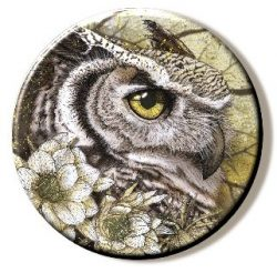 Owl  (Needleminder)