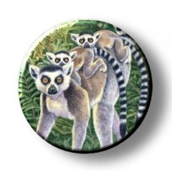 Ring Tailed Lemurs (Needleminder)