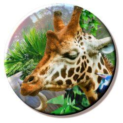 Animal Mix – Giraffe (Needleminder)